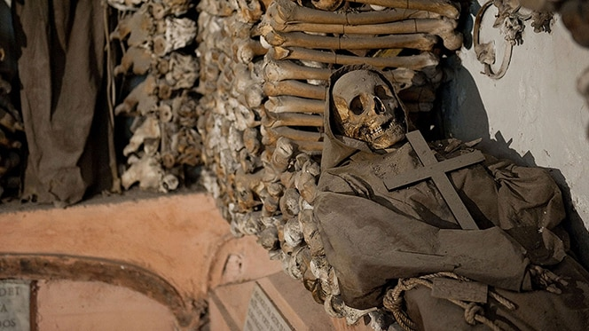 Exhumed remains of some 3,700 friars at the Capuchin Museum