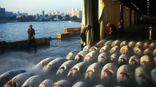 An end of an era: Tokyo's iconic Tsukiji Fish Market, one of the world's largest wholesale seafood m