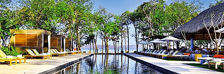 Long infinity pool overlooking lush trees and ocean.
