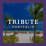 Palm trees on a tropical beach dotted with umbrellas, opens the Tribute Portfolio brand page
