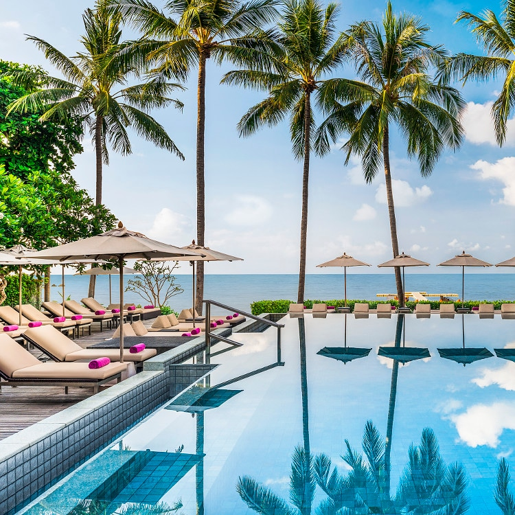 Hotel pool surrounded by chairs and palm trees, overlooking the ocean