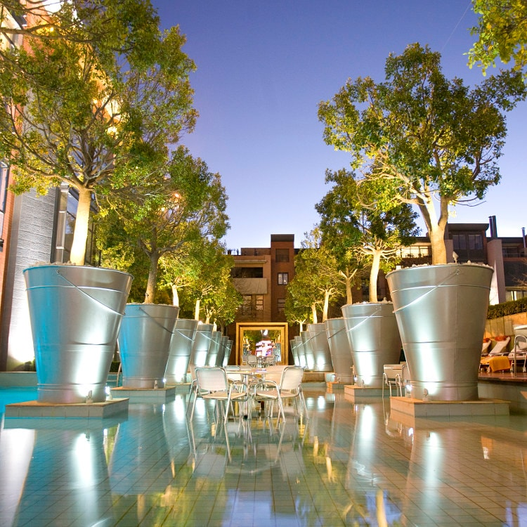Hotel courtyard lined by large potted trees in oversized buckets