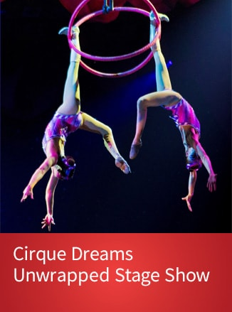 Purchase Tickets for Cirque Dreams Unwrapped Stage Show