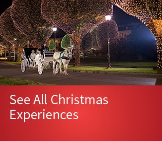 Discover Gaylord Texan Opryland Events & Activities