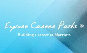 Explore Career Paths