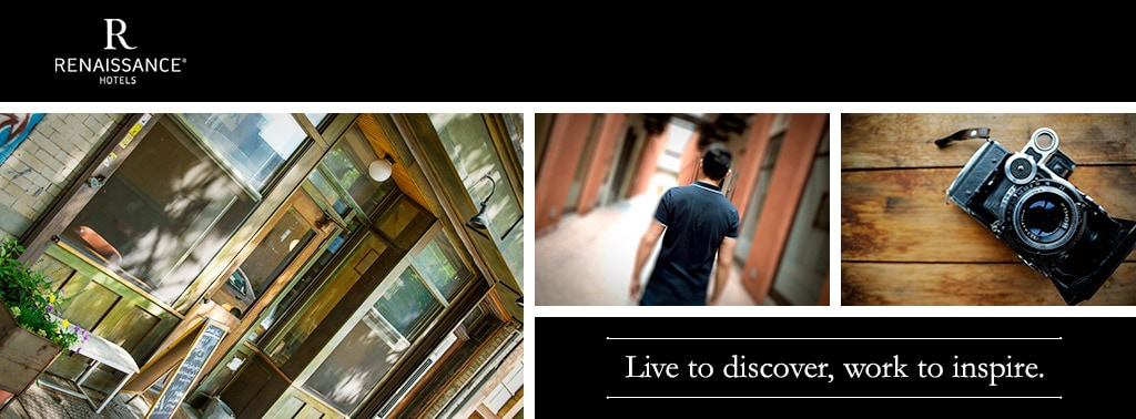 Renaissance. Live to discover, work to inspire