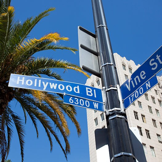 Los Angeles street signs depicting the intersection of Hollywood Boulevard and Vine.