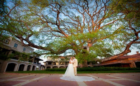 Book Your Perfect Costa Rica Destination Wedding On Marriott