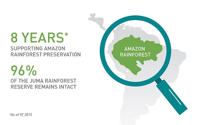 Support for the Amazon Rainforest