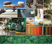 Montage of environmental images representing sustainability; opens 2016 Sustainability report
