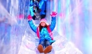 AAA Holiday Exclusive - Save up to 20% PLUS 2 tickets to ICE!