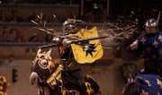 Medieval Times Dallas Package
