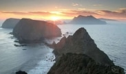 Channel Islands Wildlife Cruise Package at Courtyard Camarillo, CA