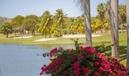 Golf GetAway Package in St. Croix