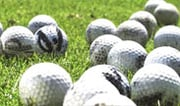 Enjoy a Day of Golf at the Cheval Country Club in Tampa / Lutz!
