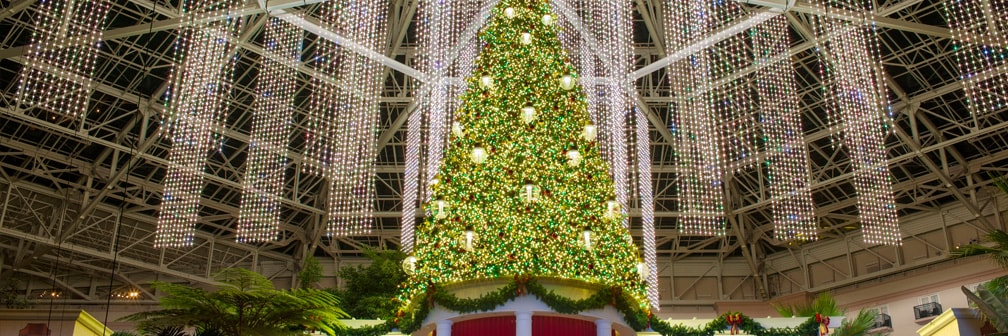 Gaylord Palms Resort's Atrium Christmas Tree
