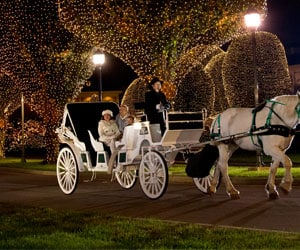 Carriage Rides during A Country Christmas at Gaylord Opryland