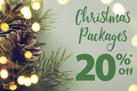 Pinecone and lights on Christmas tree branch - Packages Save 20%