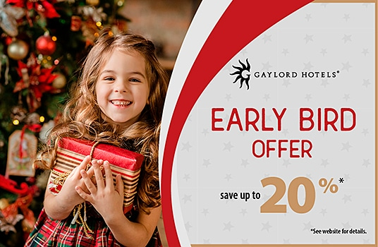 Young girl holding present in arms in front of Christmas Tree -  Gayor Texan early bird offer