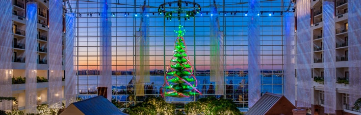 Dazzling holiday decorations and Christmas tree in the vast Gaylord National atrium.