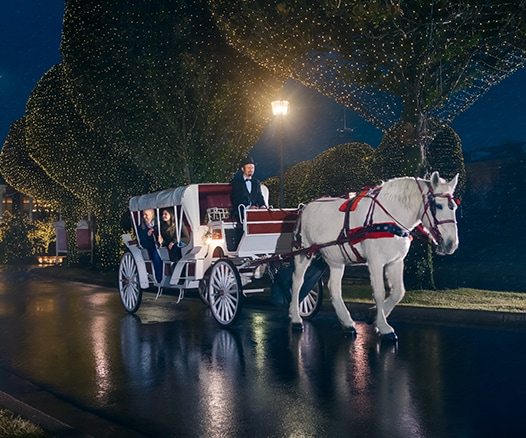 Horse-drawn Carriage during A Country Christmas at Gaylord Opryland