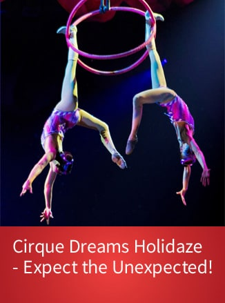 Link to Cirque Dreams Holidaze page