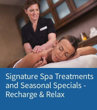 Link to Gaylord Opryland's Spa page