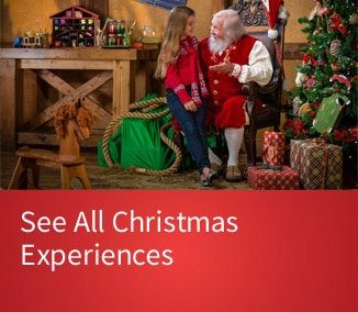 Discover Gaylord Palms Christmas Events & Activities