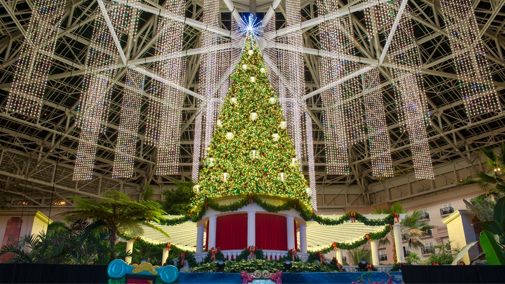 gaylord palms atrium with decoracted christmas tree