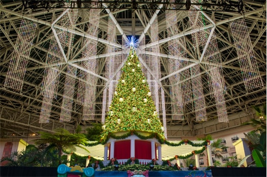 Gaylord Palms Atrium with decorated Christmas tree