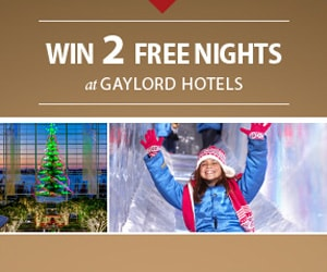 Girl on ICE! slide and Gaylord National Atrium at Christmas - link to entry form