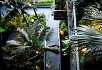 Renaissance Barcelona Fira Hotel - Atrium