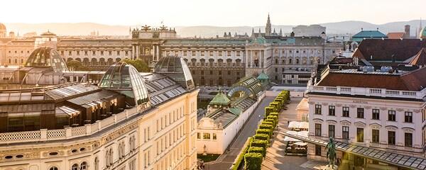 Blick über die Dächer Wiens