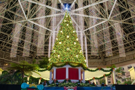 Decorated Christmas tree in Gaylord Palms atrium