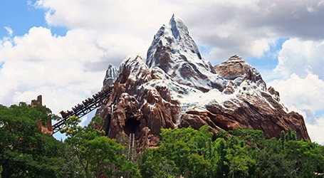 Disney's Animal Kingdom Theme Park