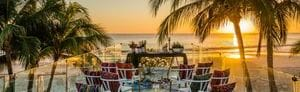 Beachfront wedding setup flanked by palms and ocean view at sunset