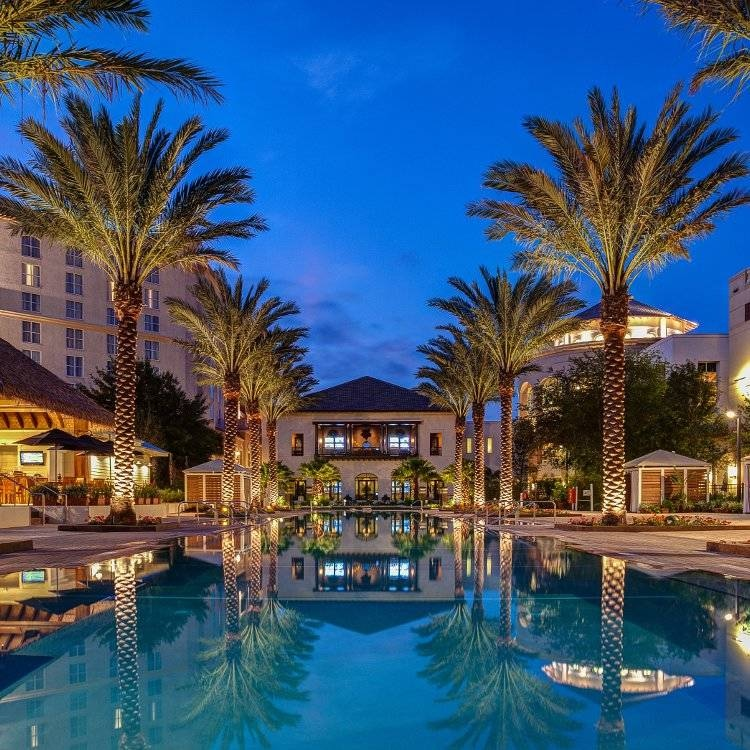 Hotel reflecting in a pool at night, lined by royal palms