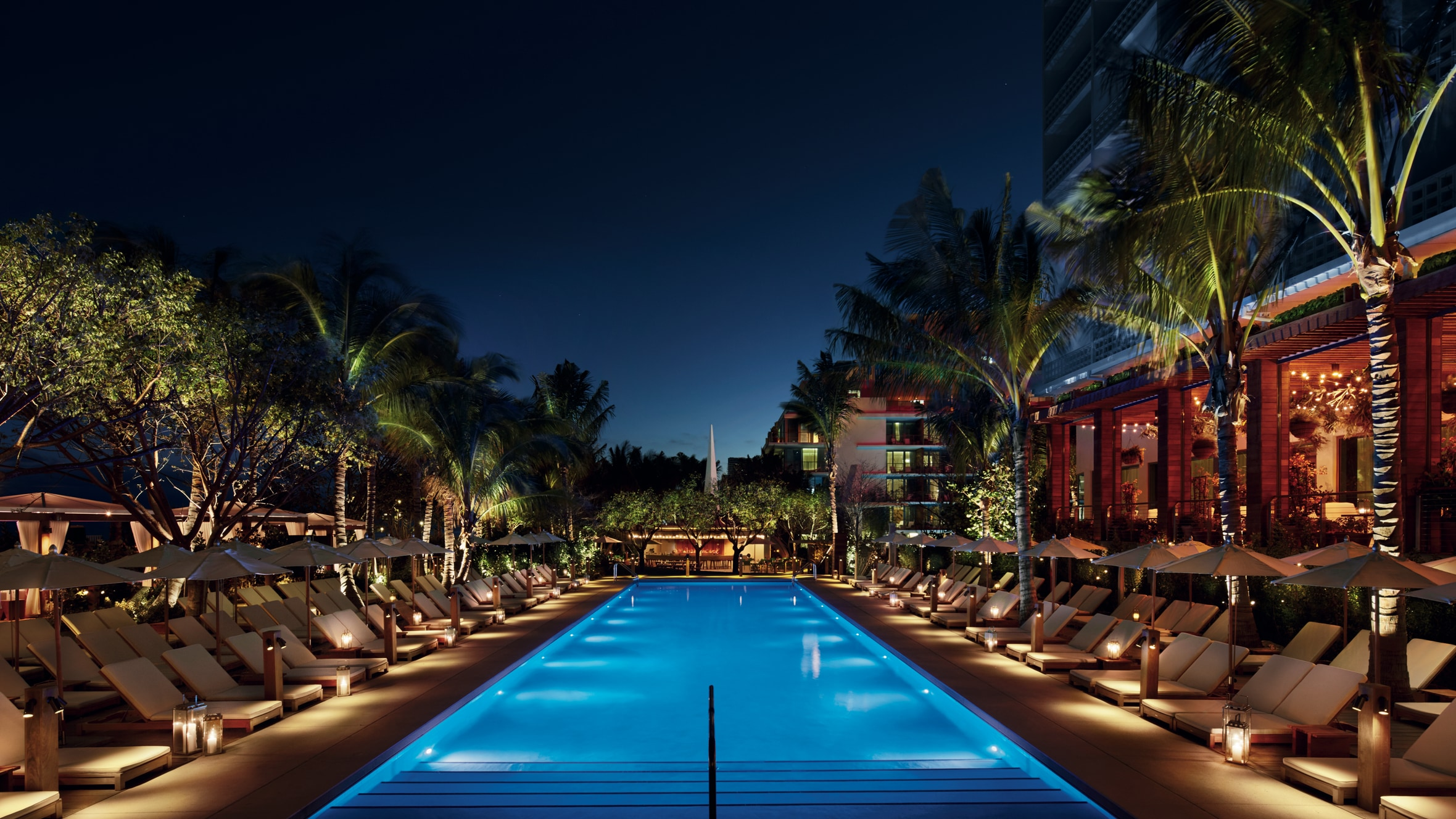 Pool lined with palm trees at night
