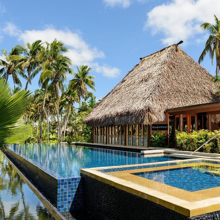 Pool with a thatched-roofed building and palms