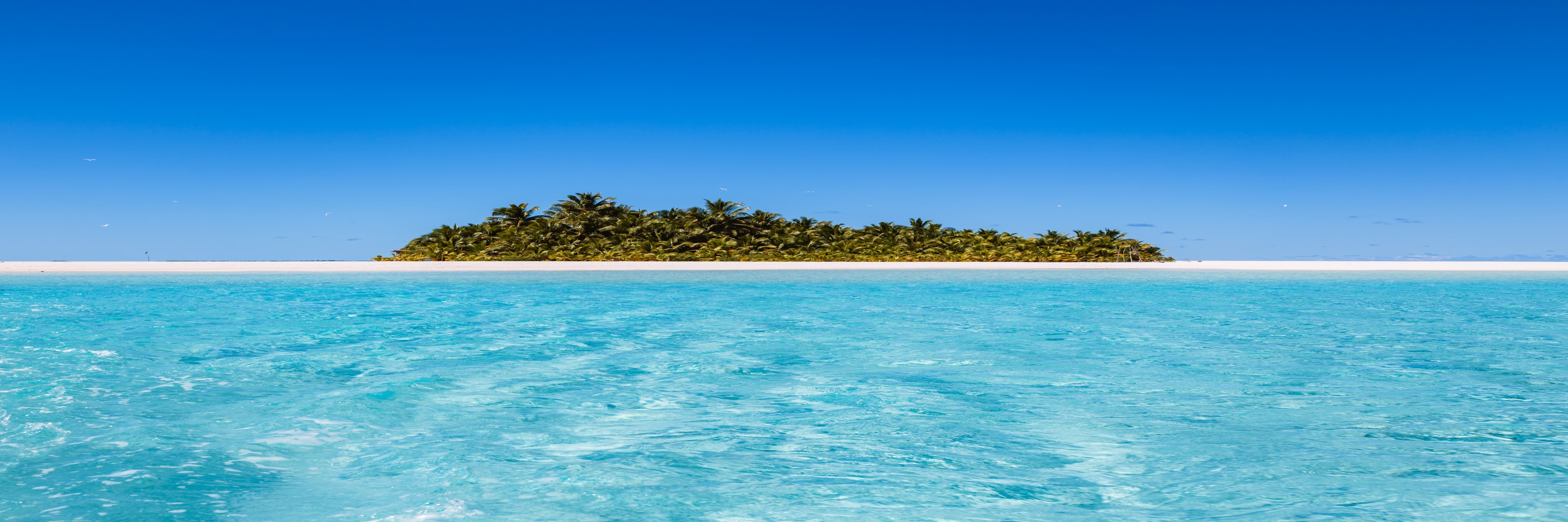 A deserted tropical island, with lush greenery, surrounded by clear blue waters.