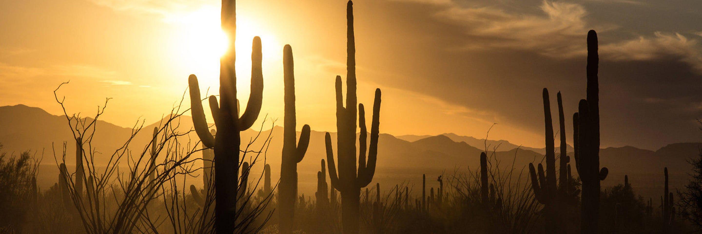 Hôtels à Tucson