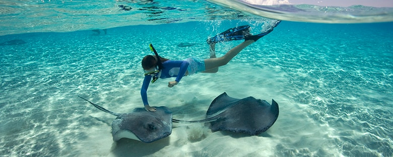 A girl snorkeling with stingrays in the Cayman Islands.