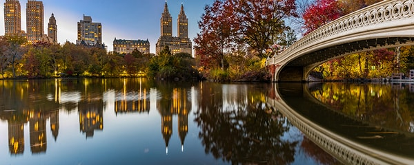 Buildings and a bridge in New York City reflecting off water in a park.
