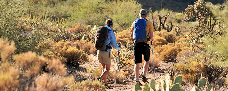 Hikers with walking sticks and backpacks hiking through the Sonoran Desert in Phoenix.