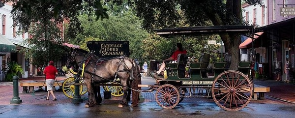 A carriage tour through the town of Savannah, Georgia.