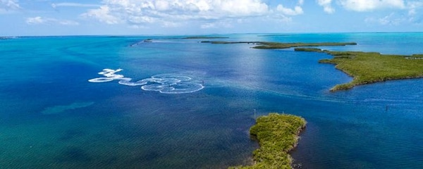 Birds eye view of the blue waters of the Florida Keys and the Everglades National Park.
