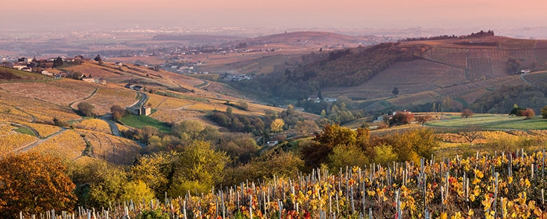 Hilltop view of rolling hills in France at dusk.