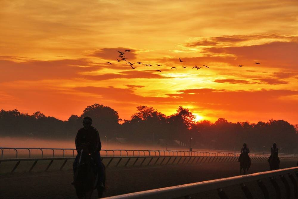 Saratoga Racetrack Sunrise