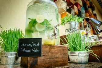 Coffee Break Lemon-Mint Infused Water