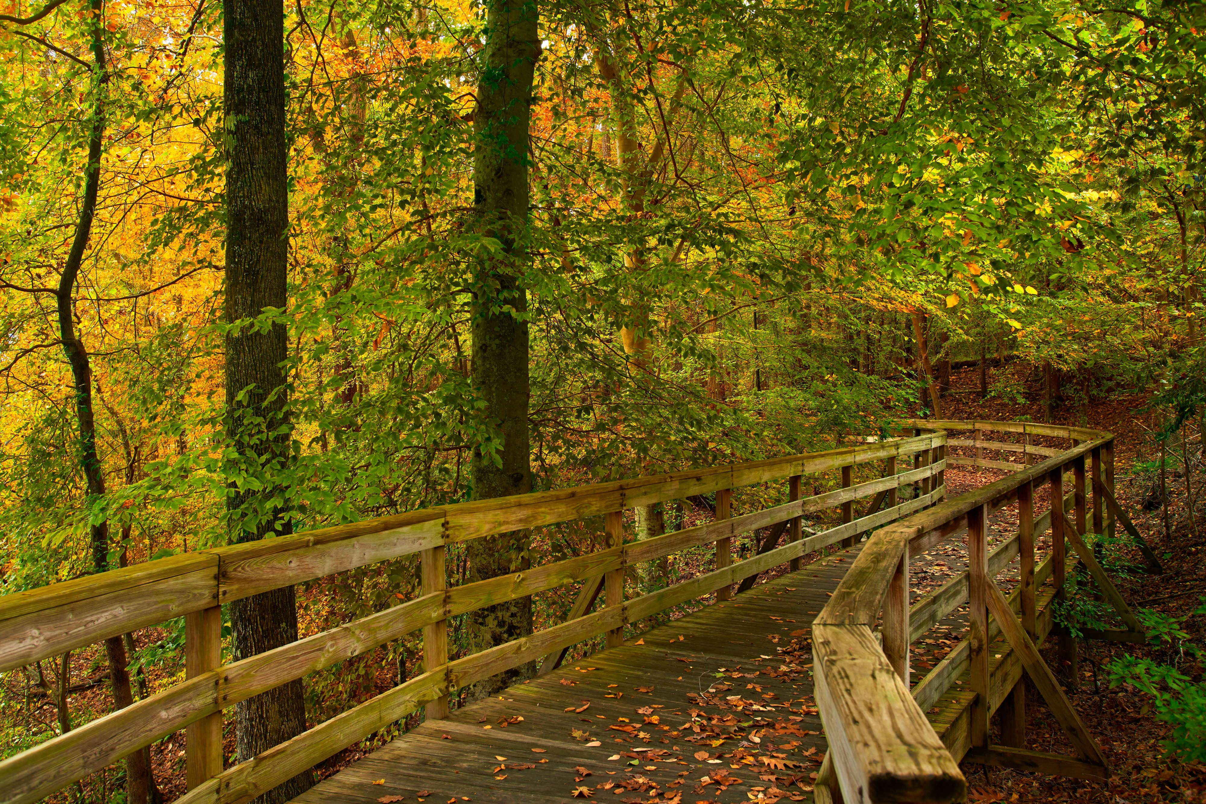 Pavilion Walkway Autumn